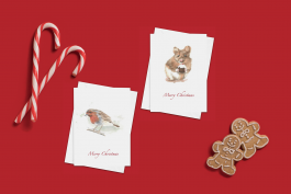Pack of 4 cards – ¨Little Pudding¨ & ¨Little Robin Redbreast¨